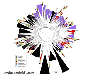 New Bacteria Groups Discovered Underground
