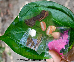 Chewing Betel Quid Exposes Half a Billion People to Oral Cancer Risk