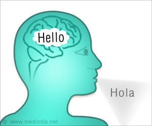 How Brain Works During Language Learning