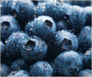 A Cup of Blueberries a Day Helps Reduce Blood Pressure, Arterial Stiffness