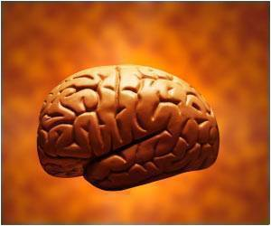 Study Says Brain Consumes Majority of Energy for Intrinsic Activity