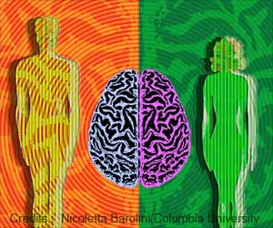 Genes that Drive Male-Female Brain Differences, Puberty Timing Identified