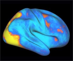 Attention Network In Brain That Controls, Redirects Cognitive Abilities Identified