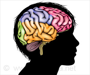Risk Avoidance Linked to Brain Structure In Elderly