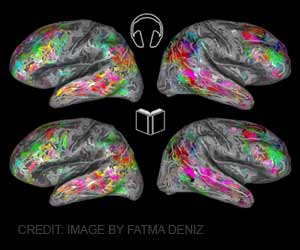 Rational or Emotional Reactions Vary With Density of Brain Cells