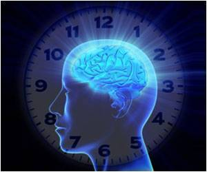 Senses Influence the Brain's Clock