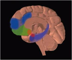Cognitive Tasks Achieved With Brain's GPS