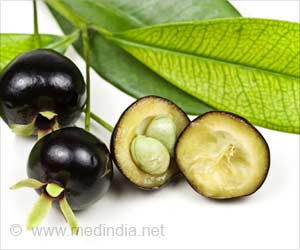 Brazilian Native Fruit Trees Have Anti-inflammatory and Antioxidant Properties