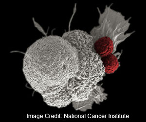 Visualizing the Movement of Immunotherapy Cells as They Hunt Down Tumors