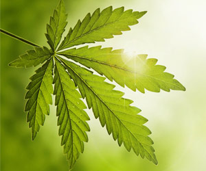 Cannabidiol (CBD) Significantly Reduces Severe Epilepsy Seizures