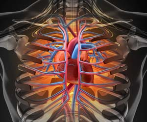 Nanotechnology Uses Platelets to Repair Heart Injury