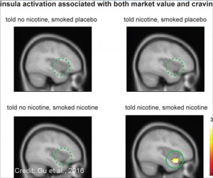 Brain Activity and Craving Changes With Belief About Nicotine Content in Cigarette