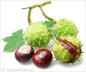 New Cancer Imaging Technique Developed from Horse Chestnuts