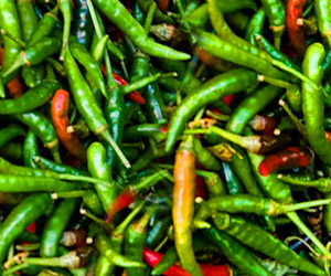 Eat Chillies, Burn Fat
