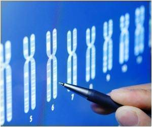 Males And Females Do Have One Chromosomal Similarity