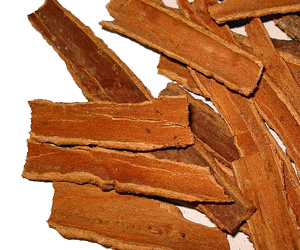 Cinnamon may Slow Down Progression of Parkinson's Disease