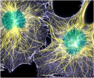 Cell Division Protein Also Power Up Mitochondria