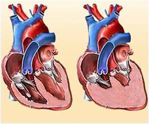 Researchers Identify a New Target for Treating Heart Failure
