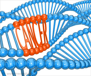 Testing the Gene May Help to Find Patient's Sensitivity to New Cancer Drugs