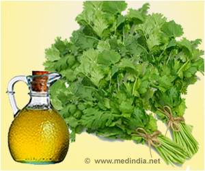 Coriander Oil may Help Fight Several Bacterial Infections Including MRSA