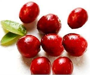 Cranberries Have Health-Promoting Properties