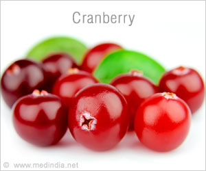 Cranberries Are Effective To Help Reduce Antibiotic Resistance