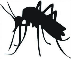 New Anti-malarial Drug induces Premature Reproduction of the Parasite