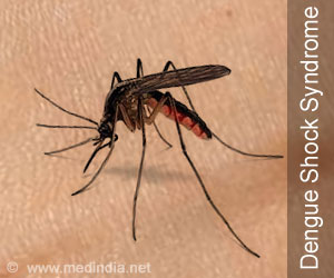 New Gene Found That Reduces Female Mosquitoes