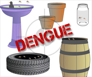 Most Dengue Infections Are Transmitted Near Home