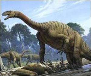 Dinosaurs Used Noses to Enhance Sense of Smell, Cool Brains