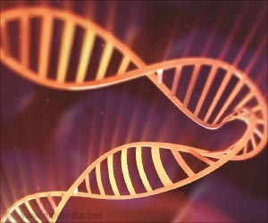 Ancient Protein-making Enzyme Protects DNA