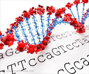 DNA Holds Second Layer of Information: Study