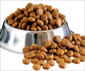 Dog Food Additive may Prevent Disabling Chemotherapy Side Effects