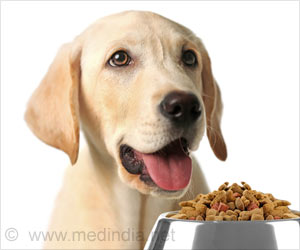 China-Made Treats Probed After Instances of Sick Pets in US