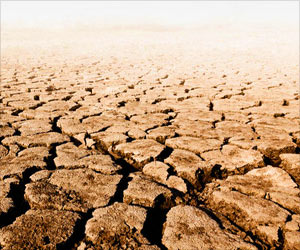 Drought Situation Looms Large in 9 Districts of Odisha: State Agriculture Minister