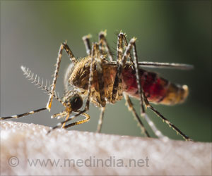 Insights into Treating Chikungunya