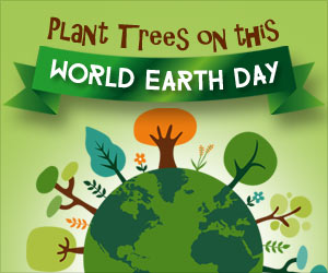 Earth Day 2016: Trees for the Earth!