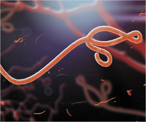 Ebola Virus Can Spread Through Sexual Transmission As Well