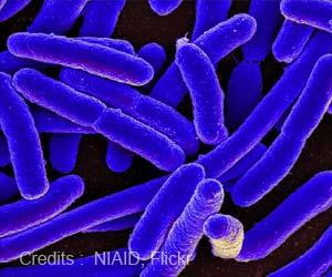 Antibiotic Resistant Bacteria can be Made Sensitive Again