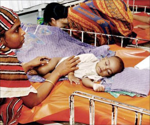 Bihar Chief Minister Seeks Solution to Check Encephalitis Outbreak in his State
