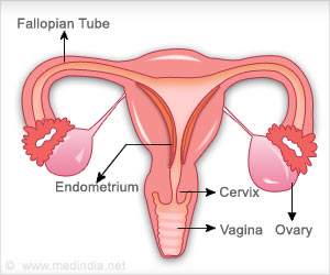 Diindolylmethane Suppresses Ovarian Cancer, Says Research