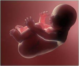 Male Child at Risk of Brain Disorders Due to Maternal Immune System Overdrive