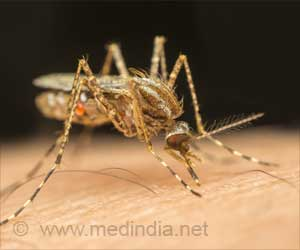 Nearly 550 Dengue Cases Reported in Himachal Pradesh, India