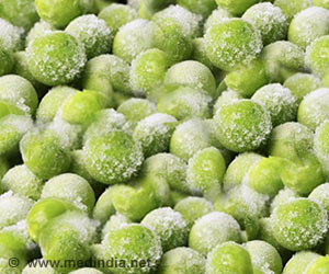 Know More About What Keeps Frozen Foods Fresh and Extends Shelf Life