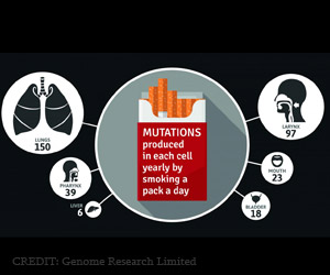 Mutation Types in Diverse Cancers Linked With Smoking