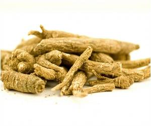 Ginseng Root Bacterium Could Fight Alzheimer's