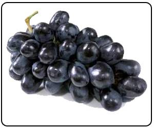 Eating Grapes may Help Prevent Age-related Blindness
