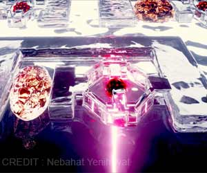 Tiny Gummy-like Robots Could Help Prevent Disease: Here's How