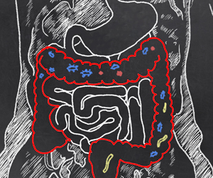 Gut Microbiome in Synchrony With Symptoms of Inflammatory Bowel Disease