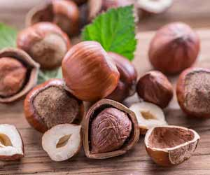 Hazelnuts Can Boost Micronutrient Levels in Older Adults